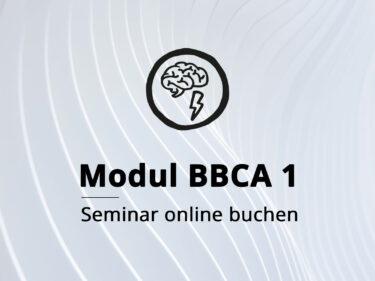 Modul BBCA 1