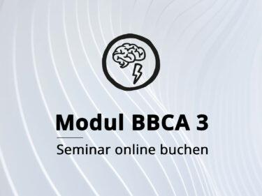 Modul BBCA 3